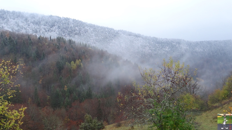 2016-11-06 : Première neige à La Mainmorte (39) 2016-11-06_neige_02
