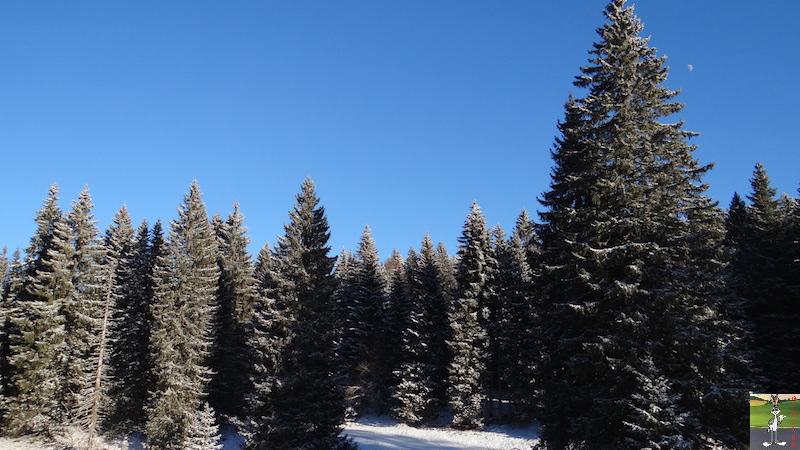 2017-01-06 : Soleil, neige et ciel bleu dans le Haut-Jura (39) 2017-01-06_soleil_neige_12