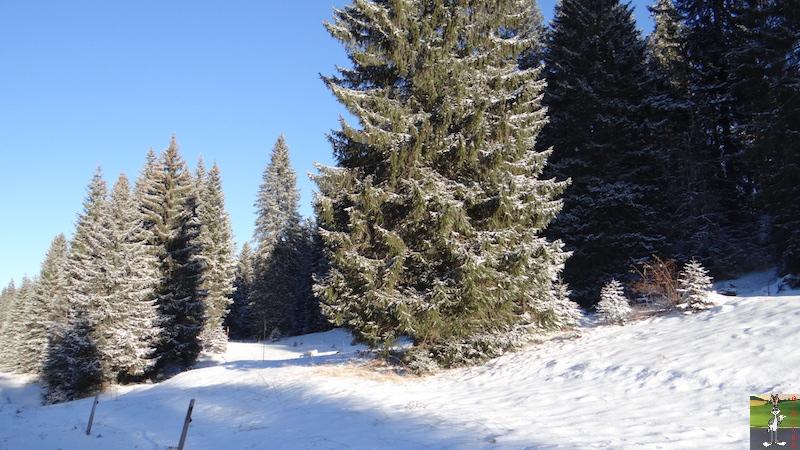 2017-01-06 : Soleil, neige et ciel bleu dans le Haut-Jura (39) 2017-01-06_soleil_neige_16