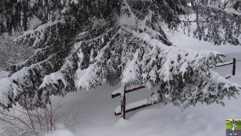 2017-01-14 : Neige à La Mainmorte (39) 2017-01-14_neige_02