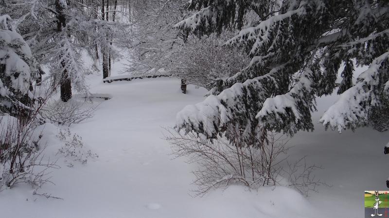 2017-01-14 : Neige à La Mainmorte (39) 2017-01-14_neige_03