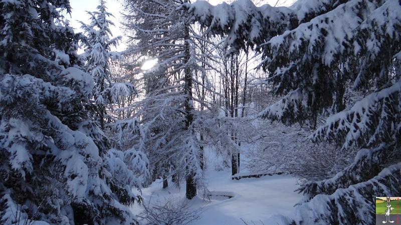 2017-01-14 : Neige à La Mainmorte (39) 2017-01-14_neige_10