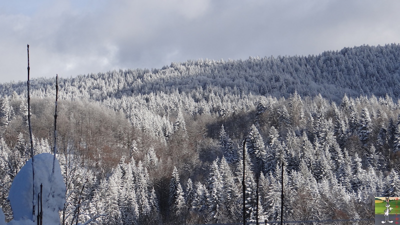 2017-01-14 : Neige à La Mainmorte (39) 2017-01-14_neige_11