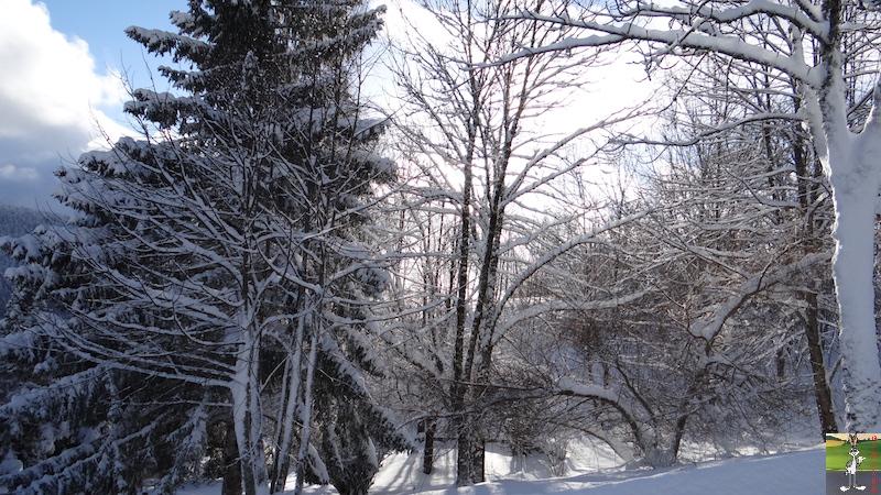 2017-01-14 : Neige à La Mainmorte (39) 2017-01-14_neige_14
