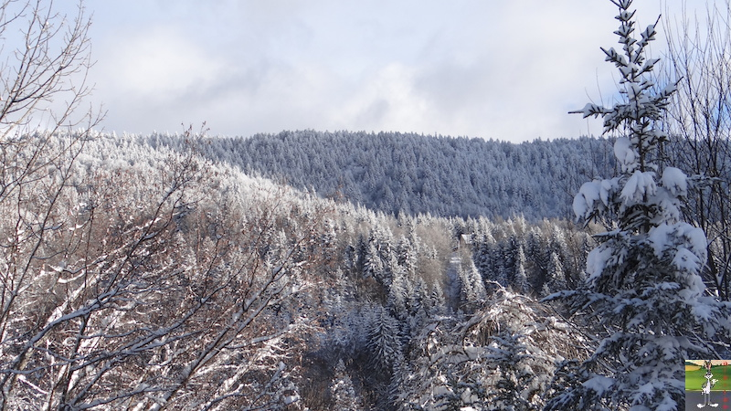 2017-01-14 : Neige à La Mainmorte (39) 2017-01-14_neige_15