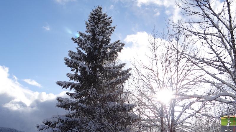 2017-01-14 : Neige à La Mainmorte (39) 2017-01-14_neige_16