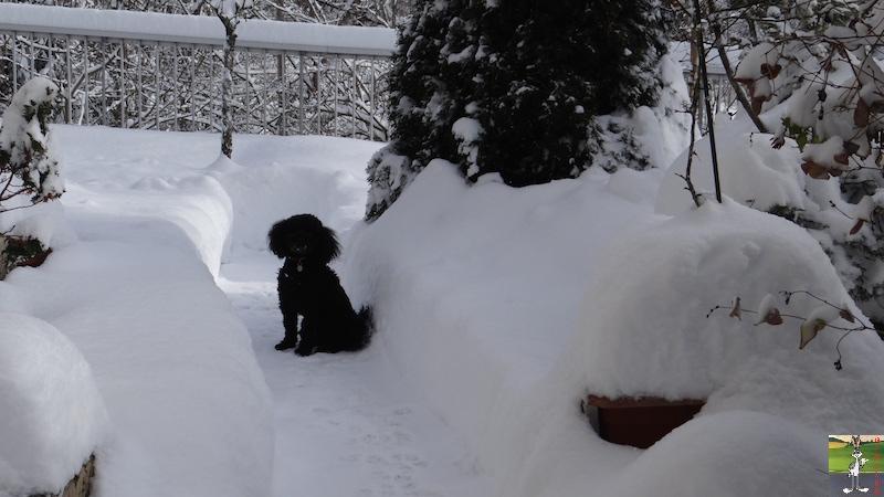 2017-01-15 : Neige à La Mainmorte (39) 2017-01-15_neige_04
