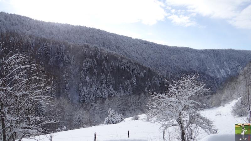 2017-01-15 : Neige à La Mainmorte (39) 2017-01-15_neige_05