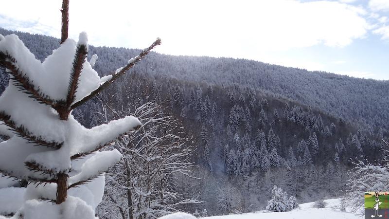 2017-01-15 : Neige à La Mainmorte (39) 2017-01-15_neige_06