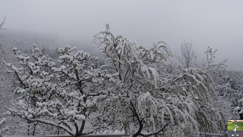2017-04-28 : Re re re retour de la neige à La mainorte (39) 2017-04-28_neige_06