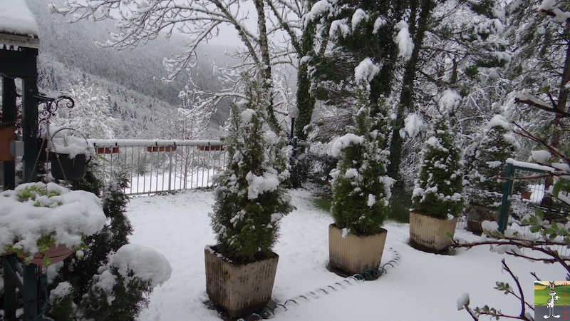 2017-05-01 : A nouveau de la neige à La Mainmorte (39) 2017-05-01_neige_02