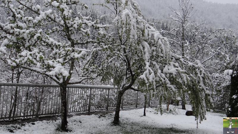 2017-05-01 : A nouveau de la neige à La Mainmorte (39) 2017-05-01_neige_09