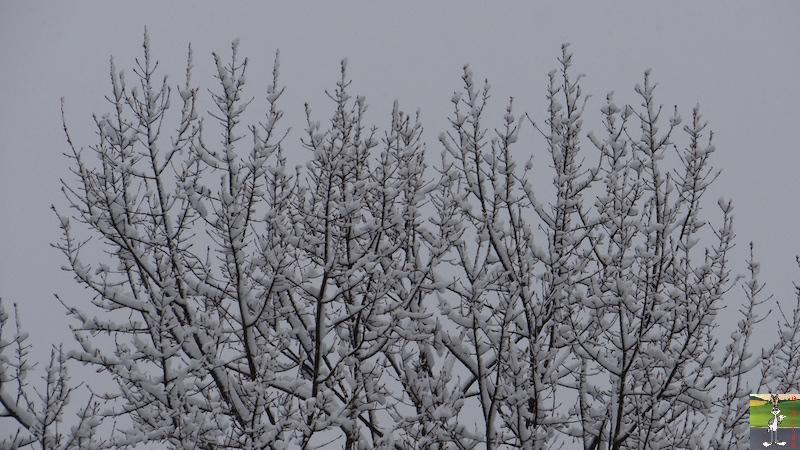 2017-05-01 : A nouveau de la neige à La Mainmorte (39) 2017-05-01_neige_12