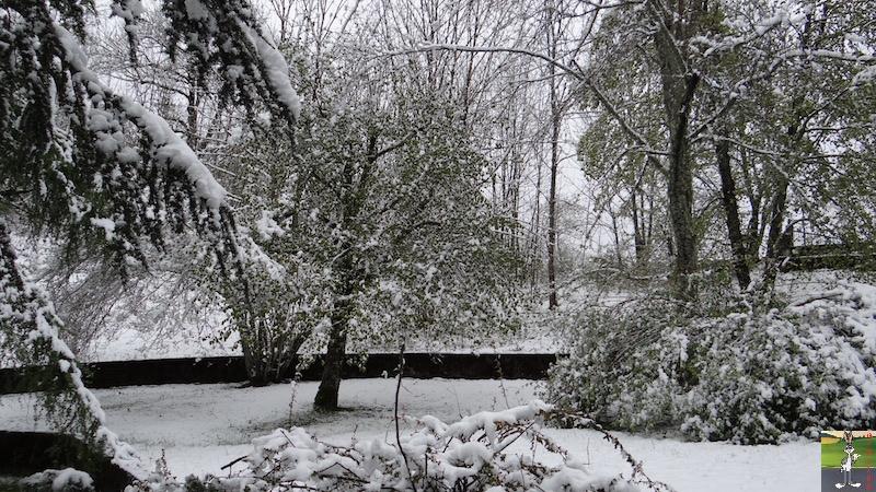 2017-05-01 : A nouveau de la neige à La Mainmorte (39) 2017-05-01_neige_13