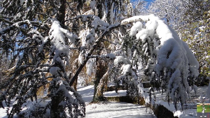 2017-11-14 : Neige et soleil à La Mainmorte (39) 2017-11-14_neige_01