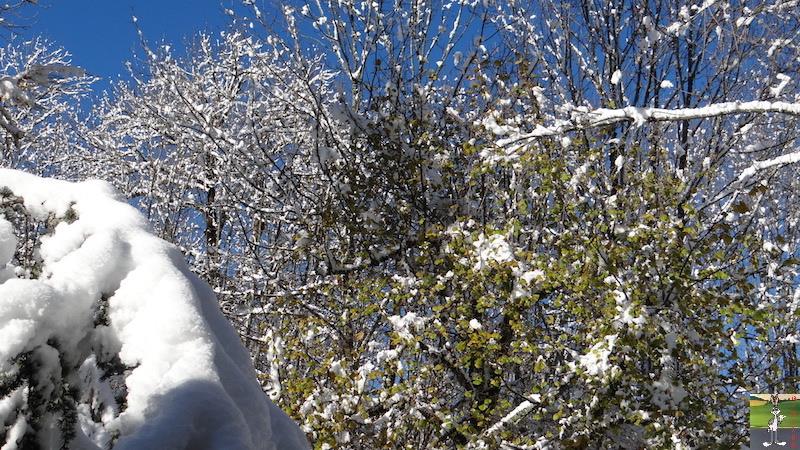 2017-11-14 : Neige et soleil à La Mainmorte (39) 2017-11-14_neige_02