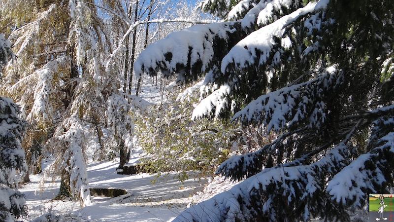 2017-11-14 : Neige et soleil à La Mainmorte (39) 2017-11-14_neige_11
