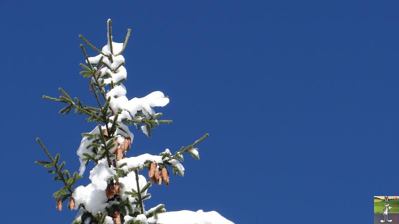 2017-11-14 : Neige et soleil à La Mainmorte (39) 2017-11-14_neige_17