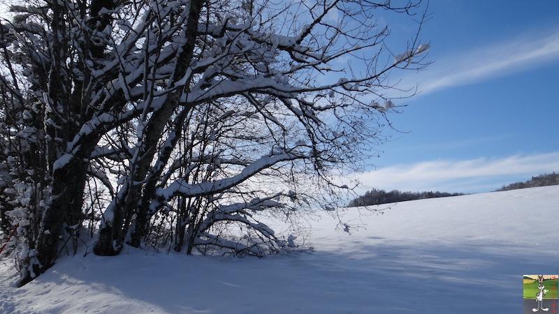 2017-12-02 : Neige, soleil et ciel bleu à La Mainmorte (39) 2017-12-02_Neige_Soleil_14