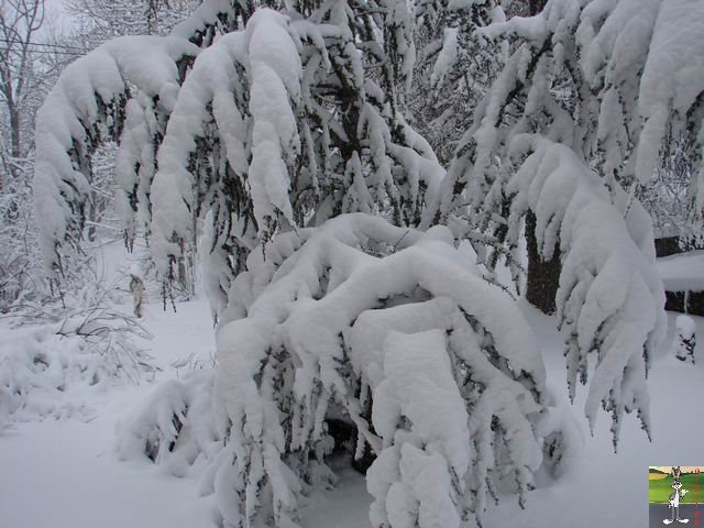 Chutes de neige durant le week-end de Pâques 2008 La_Mainmorte_01