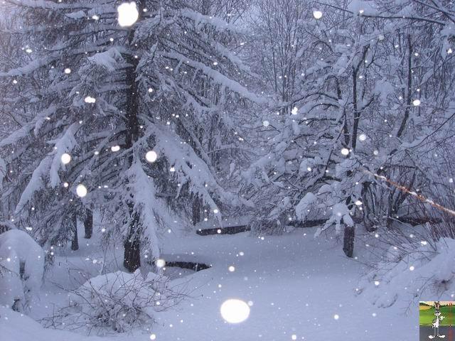 Chutes de neige durant le week-end de Pâques 2008 La_Mainmorte_25