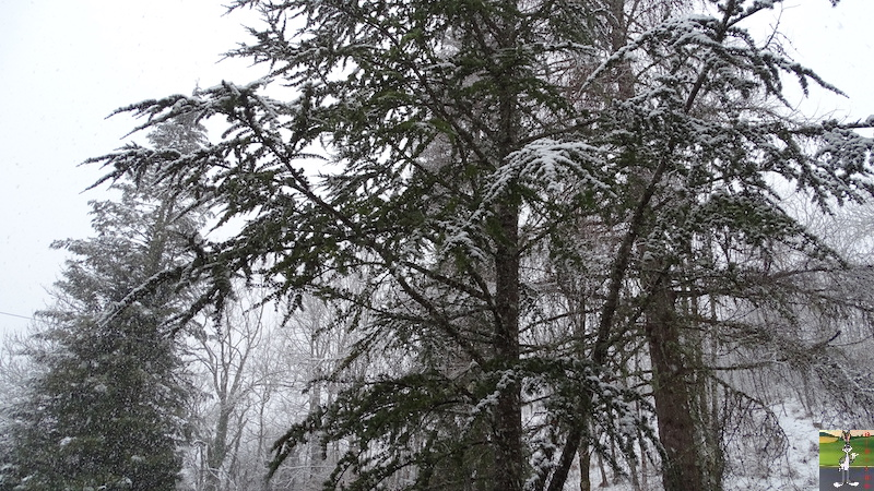 2018-01-26 : Retour de la neige à La Mainmorte (39) 2018-01-26_Neige_03