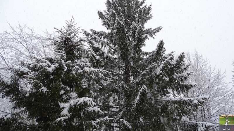 2018-01-26 : Retour de la neige à La Mainmorte (39) 2018-01-26_Neige_05