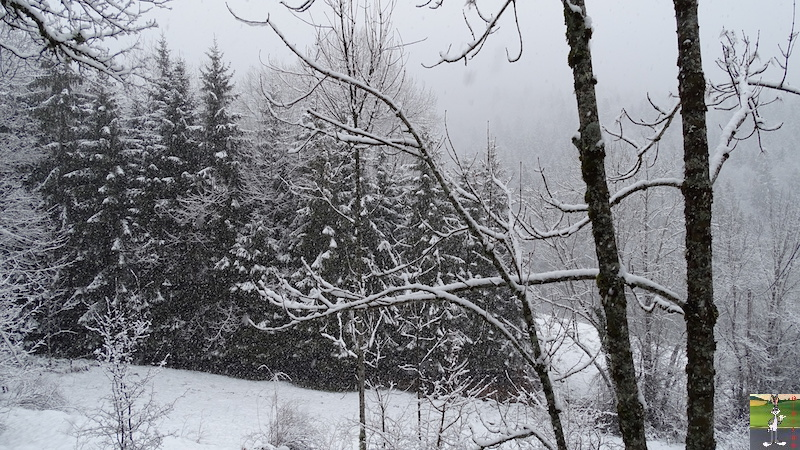 2018-01-26 : Retour de la neige à La Mainmorte (39) 2018-01-26_Neige_06