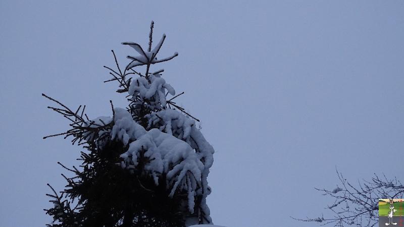 2018-02-02 : Nouveau retour de la neige à La Mainmorte (39) 2018-02-02_Neige_06