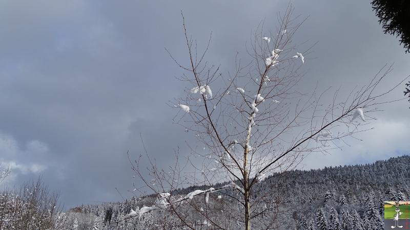 2018-02-04 : Neige et ciel gris à La Mainmorte (39) 2018-02-04_Neige_Ciel_Gris_07