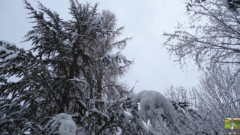 2018-03-02 : Nième retour de la neige à La Mainmorte (39) 2018-03-02_neige_03