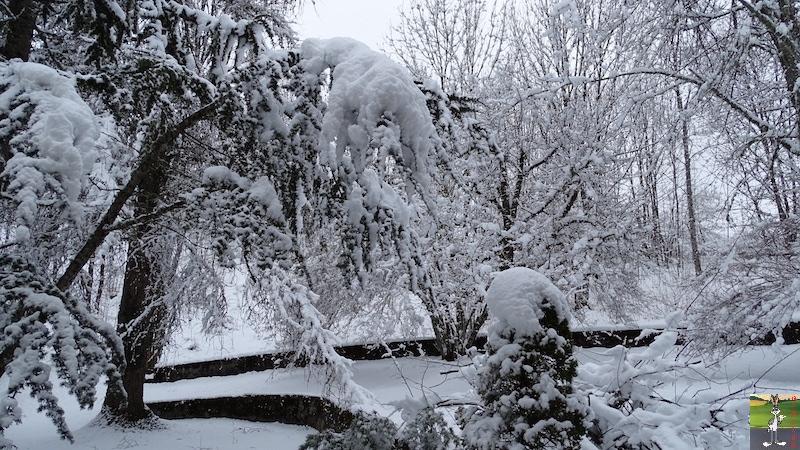 """Les 4 Saisons de """"Mon Jura"""" - Page 12 2018-03-02_neige_04"""