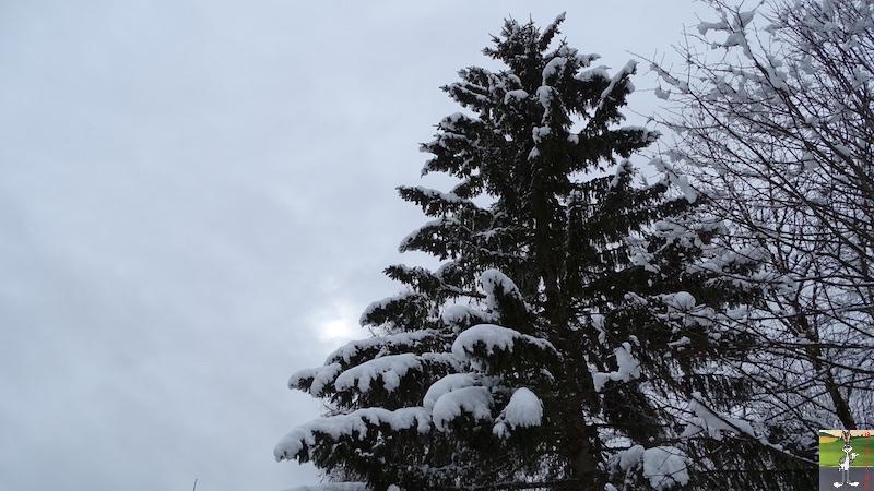 2018-03-02 : Nième retour de la neige à La Mainmorte (39) 2018-03-02_neige_12