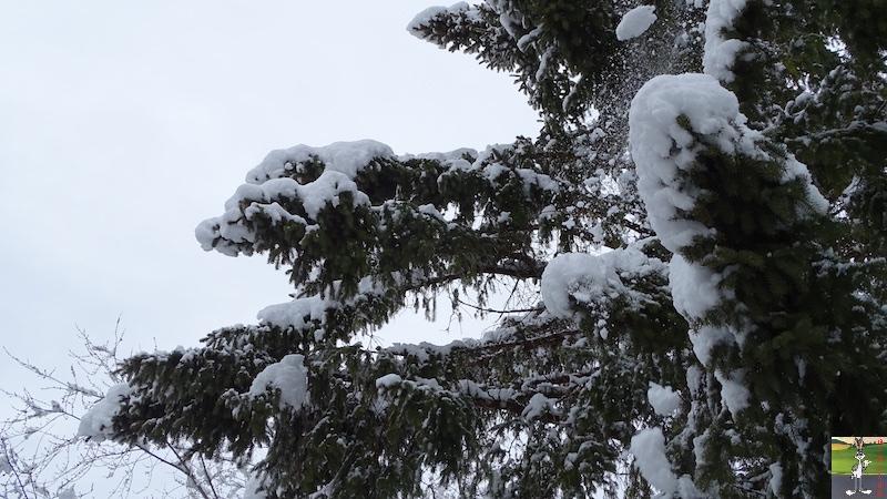2018-03-02 : Nième retour de la neige à La Mainmorte (39) 2018-03-02_neige_14
