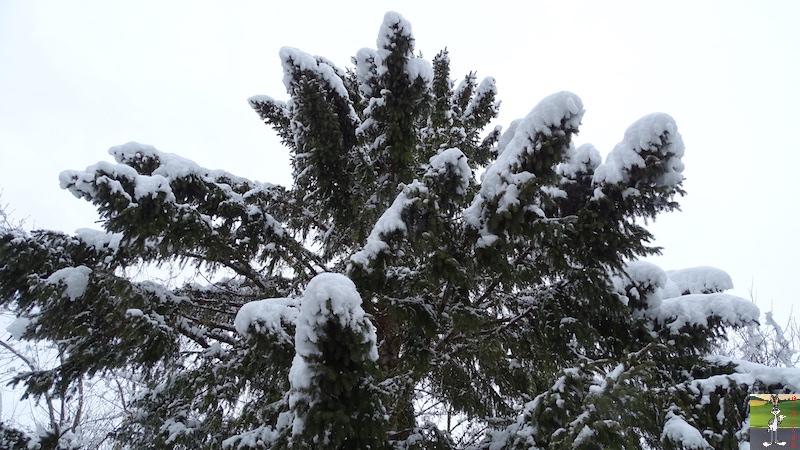 2018-03-02 : Nième retour de la neige à La Mainmorte (39) 2018-03-02_neige_15