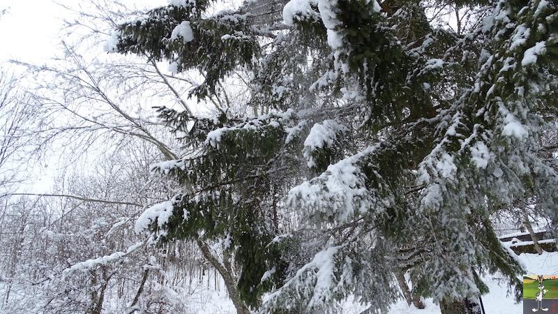 2018-03-02 : Nième retour de la neige à La Mainmorte (39) 2018-03-02_neige_16