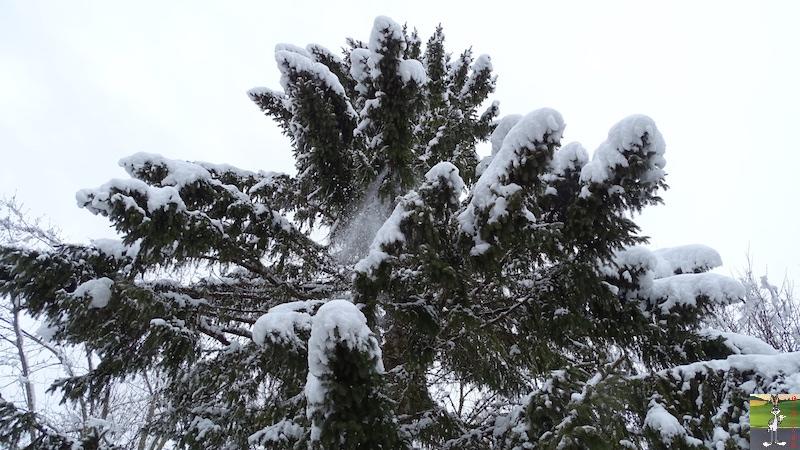 2018-03-02 : Nième retour de la neige à La Mainmorte (39) 2018-03-02_neige_17