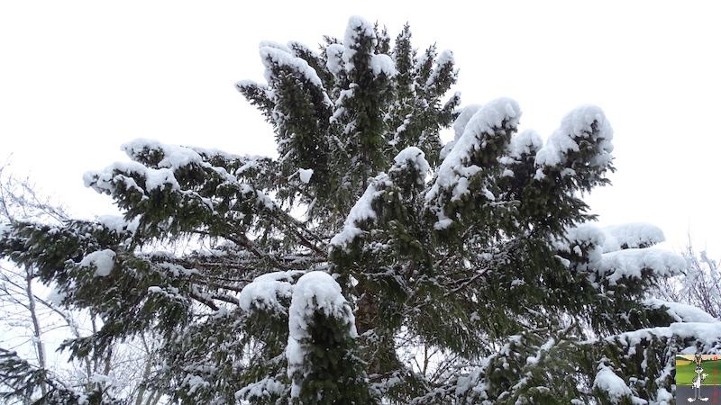 2018-03-02 : Nième retour de la neige à La Mainmorte (39) 2018-03-02_neige_18