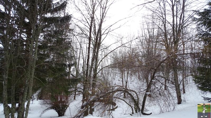 """Les 4 Saisons de """"Mon Jura"""" - Page 12 2018-03-03_neige_brouillard_soleil_01"""