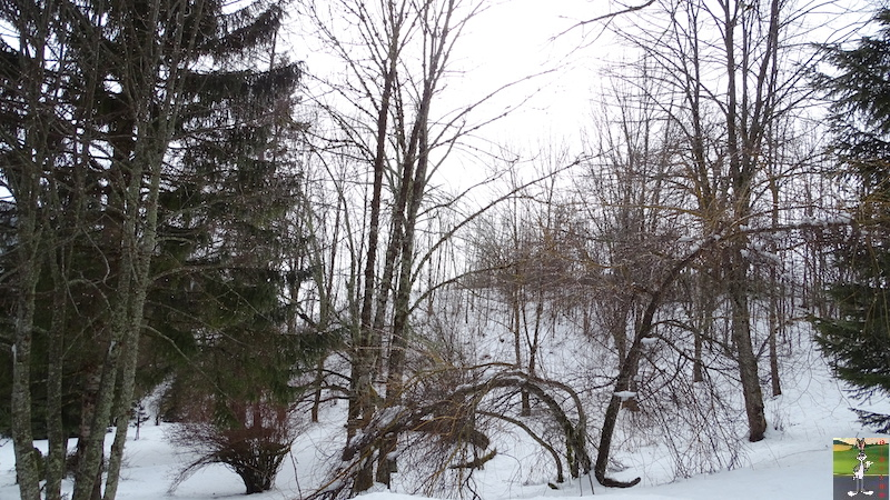 2018-03-03 : Neige, brouillard et soleil à La Mainmorte (39) 2018-03-03_neige_brouillard_soleil_01