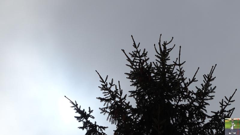 """Les 4 Saisons de """"Mon Jura"""" - Page 12 2018-03-03_neige_brouillard_soleil_06"""
