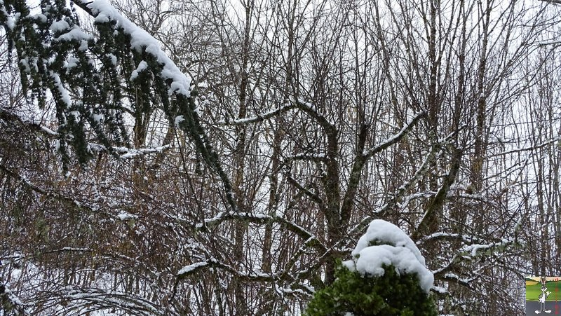 2018-03-18 : Nième retour de la neige à La Mainmorte (39) 2018-03-18_neige_09
