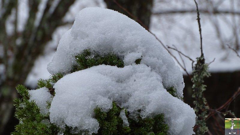 2018-03-18 : Nième retour de la neige à La Mainmorte (39) 2018-03-18_neige_10