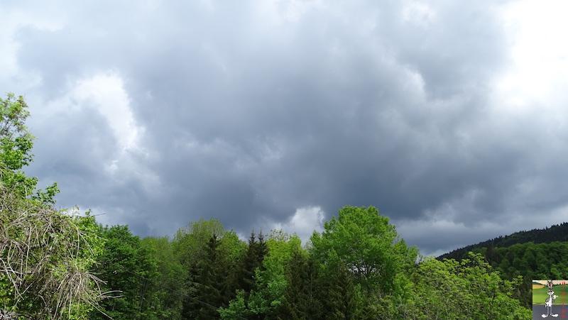 2018-05-20 : Le temps se grise à La Mainmorte (39) 2018-05-20_gris_01