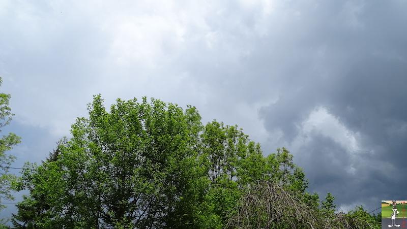 2018-05-20 : Le temps se grise à La Mainmorte (39) 2018-05-20_gris_02