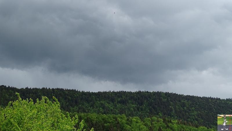 2018-05-20 : Le temps se grise à La Mainmorte (39) 2018-05-20_gris_06