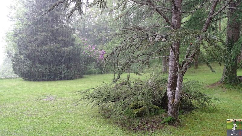2018-05-20 : Le temps se grise à La Mainmorte (39) 2018-05-20_gris_07
