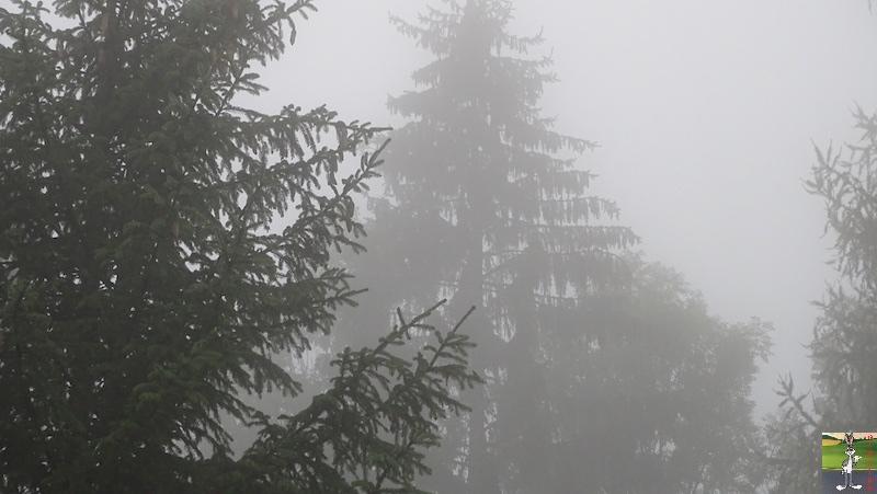 2018-10-07 : Brume et brouillard à La Mainmorte (39) 2018-10-07_moche_temps_04