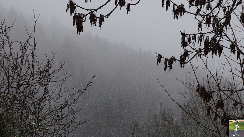 2018-12-08 : Retour de la neige à La Mainmorte (39) 2018-12-08_neige_04