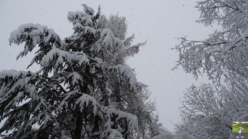 2019-01-13 : La neige tombe abondamment à La Mainmorte (39) 2019-01-13_neige_04